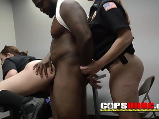 Officers select the biggest black bear to have hard intercourse